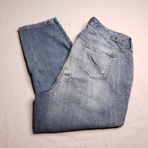 Torrid Insider Collection Size 16 S Ripped Jeans
